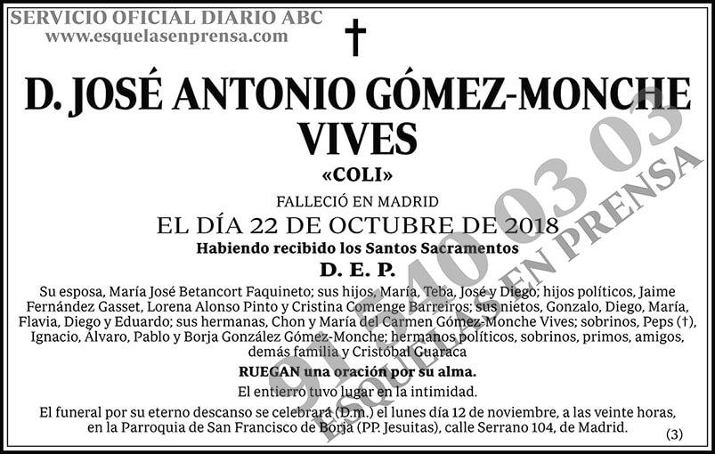 José Antonio Gómez-Monche Vives